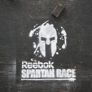 spartan wall.jpg large