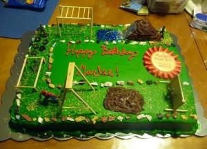 Assault Course Cake