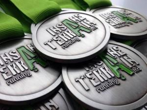 Insane Terrain Medals